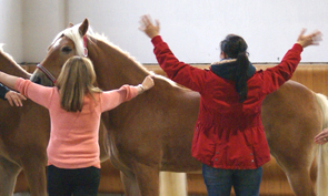 Horse assisted Coaching